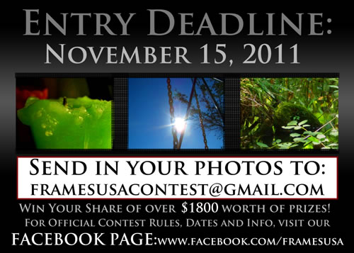 From Frames USA and Art Gallery: Photography Contest Deadline November 15, 2011